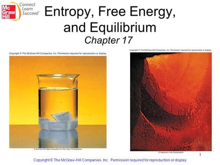 Entropy, Free Energy, and Equilibrium