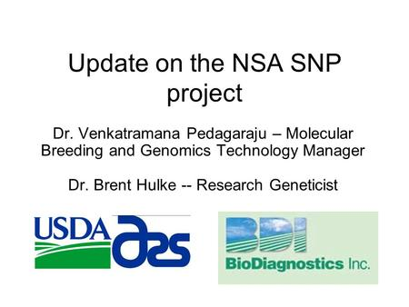 Update on the NSA SNP project Dr. Venkatramana Pedagaraju – Molecular Breeding and Genomics Technology Manager Dr. Brent Hulke -- Research Geneticist.