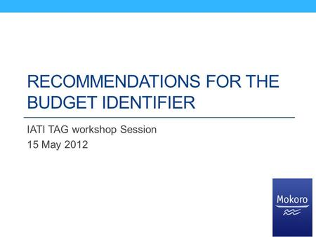 RECOMMENDATIONS FOR THE BUDGET IDENTIFIER IATI TAG workshop Session 15 May 2012.