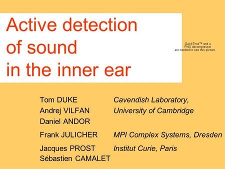 Active detection of sound in the inner ear Tom DUKE Cavendish Laboratory, Andrej VILFAN University of Cambridge Daniel ANDOR Frank JULICHER MPI Complex.