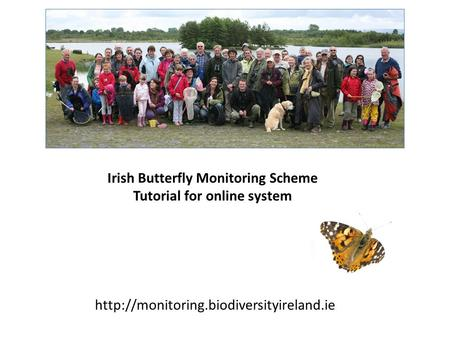 Irish Butterfly Monitoring Scheme Tutorial for online system