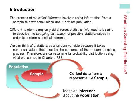 What Is a Sampling Distribution?