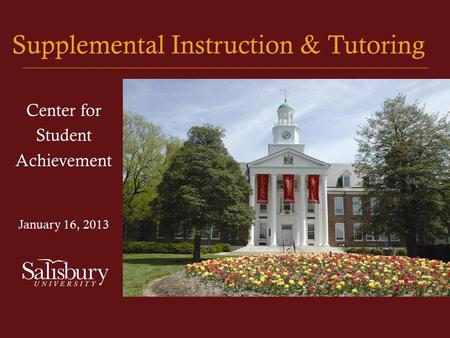 Supplemental Instruction & Tutoring Center for Student Achievement January 16, 2013.