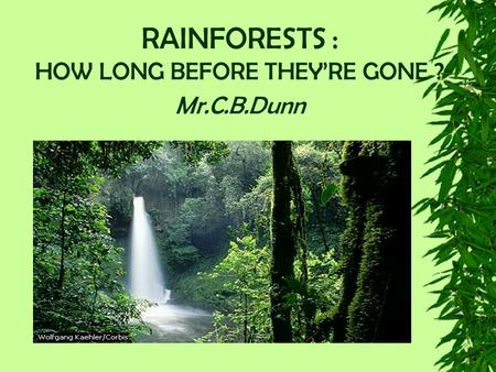 RAINFORESTS : HOW LONG BEFORE THEY'RE GONE ? Mr.C.B.Dunn.