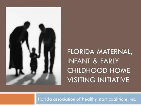 FLORIDA MATERNAL, INFANT & EARLY CHILDHOOD HOME VISITING INITIATIVE florida association of healthy start coalitions, inc.