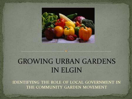 IDENTIFYING THE ROLE OF LOCAL GOVERNMENT IN THE COMMUNITY GARDEN MOVEMENT GROWING URBAN GARDENS IN ELGIN.