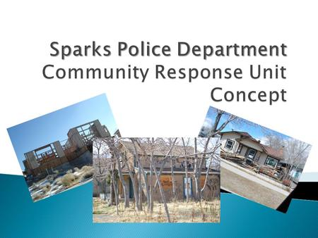  Community Response Unit (CRU) functions  Organizational chart  Mission  Problem identification  Response and solutions  Measurable outcomes  Resources.