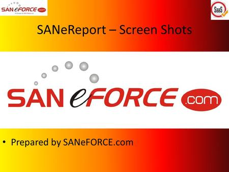 SANeReport – Screen Shots Prepared by SANeFORCE.com.
