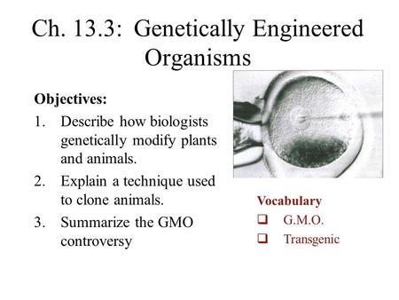Ch. 13.3: Genetically Engineered Organisms