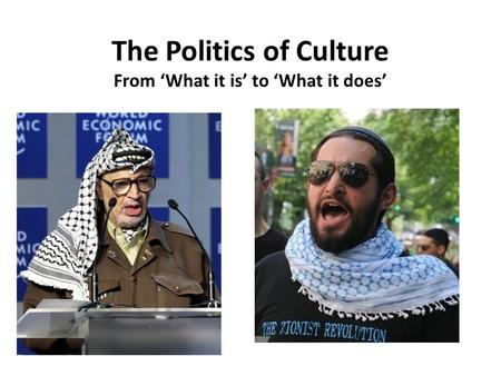 The Politics of Culture From 'What it is' to 'What it does'