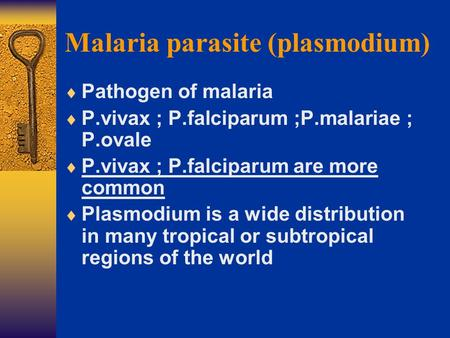 Malaria parasite (plasmodium)  Pathogen of malaria  P.vivax ; P.falciparum ;P.malariae ; P.ovale  P.vivax ; P.falciparum are more common  Plasmodium.