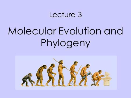 Lecture 3 Molecular Evolution and Phylogeny. Facts on the molecular basis of life Every life forms is genome based Genomes evolves There are large numbers.