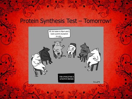 Protein Synthesis Test – Tomorrow!. Meiosis Similarities and Differences between Mitosis and Meiosis MitosisMeiosis Where does it occur in body? # Cell.
