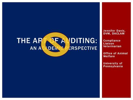 The Art of Auditing: An academic perspective