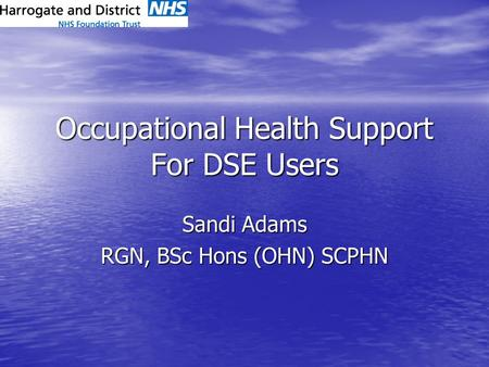 Occupational Health Support For DSE Users Sandi Adams RGN, BSc Hons (OHN) SCPHN.
