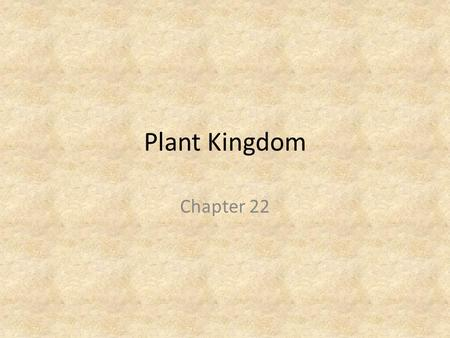 Plant Kingdom Chapter 22. What Is A Plant? Plants are eukaryotic, multicellular organisms that have chlorophyll a and chlorophyll b and carry on photosynthesis.
