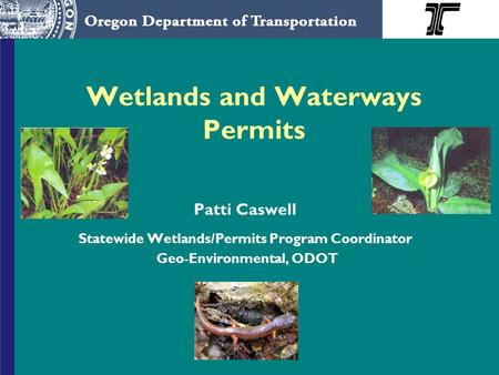 Wetlands and Waterways Permits Patti Caswell Statewide Wetlands/Permits Program Coordinator Geo-Environmental, ODOT.