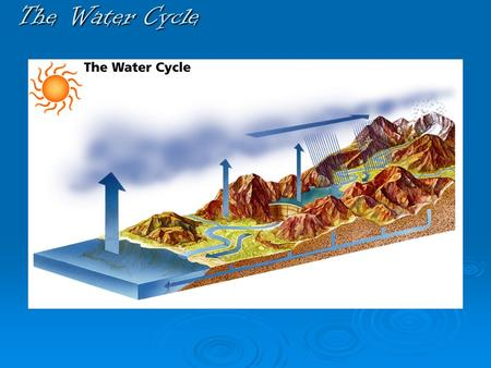 The Water Cycle. THE SUN DRIVES THE WATER CYCLE.