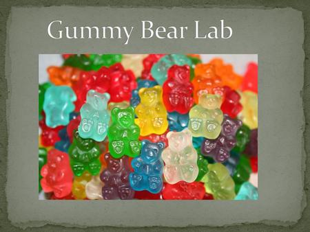 Gummy Bear Lab.