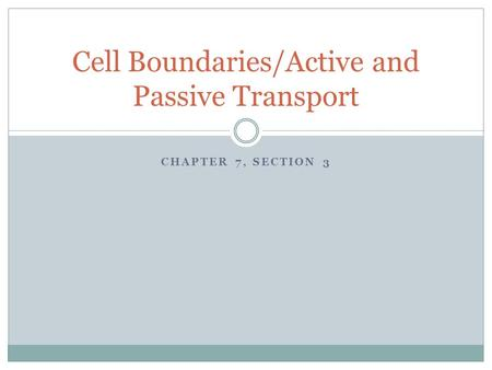 Cell Boundaries/Active and Passive Transport