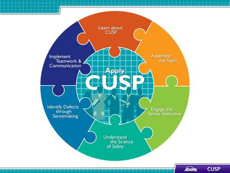 Learning Objectives Review key steps of the CUSP Toolkit