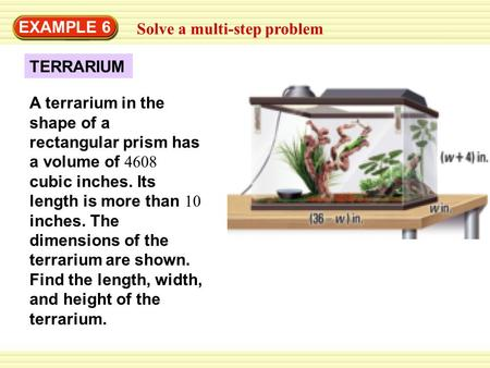 EXAMPLE 6 Solve a multi-step problem TERRARIUM
