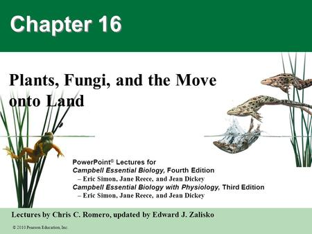 Plants, Fungi, and the Move onto Land