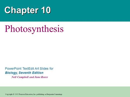 Chapter 10 Photosynthesis.