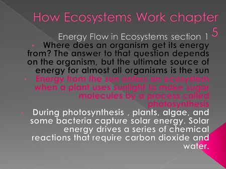 How Ecosystems Work chapter 5
