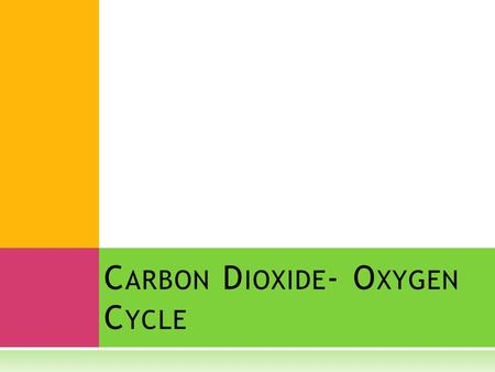 C ARBON D IOXIDE - O XYGEN C YCLE. ∞  Plants and animals are linked for survival through the carbon dioxide- oxygen cycle.