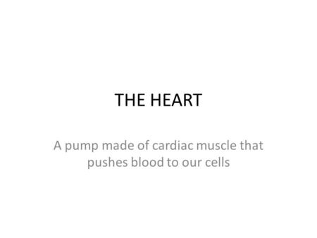 A pump made of cardiac muscle that pushes blood to our cells