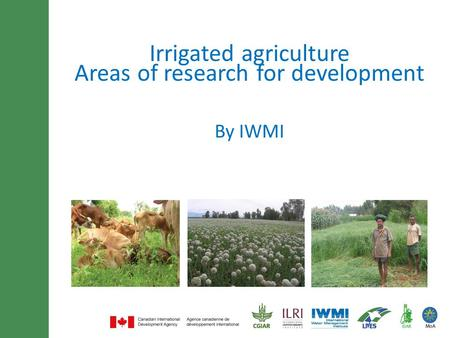 Minimum of 30 font size and maximum of 3 lines title By IWMI Irrigated agriculture Areas of research for development.