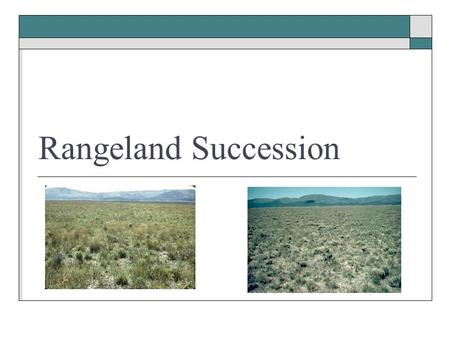 Rangeland Succession. Succession  The orderly change of plant communities over time.  The gradual replacement of one plant community by another through.