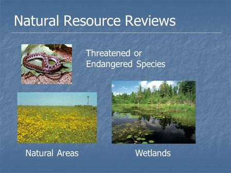 Natural Resource Reviews Threatened or Endangered Species Natural AreasWetlands.