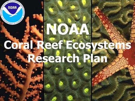 NOAA Coral Reef Ecosystems Research Plan. Identifies where and what kind of intervention is needed – mapping & assessment. Expands management options.