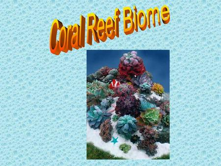 Introduction to Coral Reefs Coral reefs are amazing, natural wonders that live in the warm waters of the tropics, providing habitat for thousands of marine.