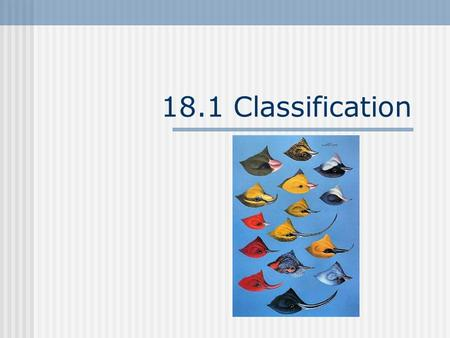 18.1 Classification. The need for systems. I. Taxonomy- the science of describing, naming and classifying organisms. a. this is necessary because there.
