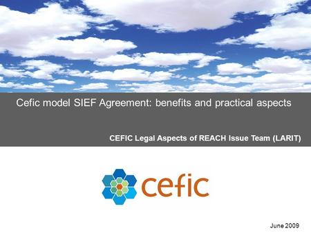 Cefic model SIEF Agreement: benefits and practical aspects CEFIC Legal Aspects of REACH Issue Team (LARIT) June 2009.