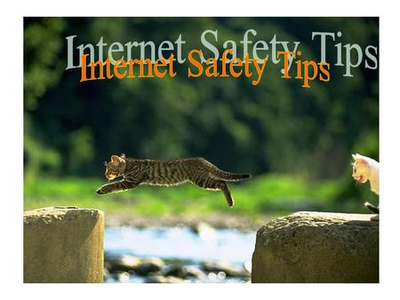 Internet Safety Tips.
