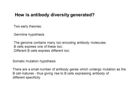 How is antibody diversity generated? Two early theories: Germline hypothesis The genome contains many loci encoding antibody molecules. B cells express.