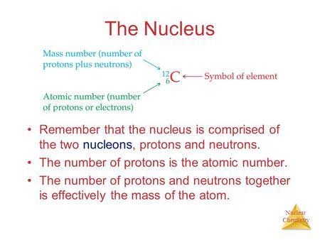 Nuclear Chemistry The Nucleus Remember that the nucleus is comprised of the two nucleons, protons and neutrons. The number of protons is the atomic number.