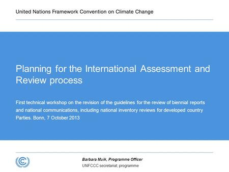Planning for the International Assessment and Review process