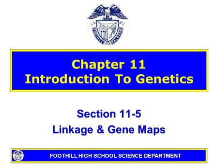 Chapter 10.3 Gene Linkage and Polyploidy - ppt video online ... on