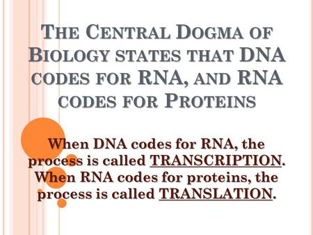 T HE C ENTRAL D OGMA OF B IOLOGY STATES THAT DNA CODES FOR RNA, AND RNA CODES FOR P ROTEINS When DNA codes for RNA, the process is called TRANSCRIPTION.