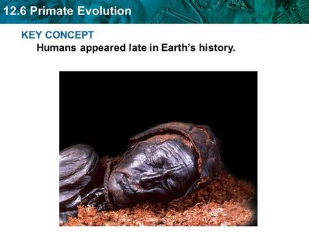 KEY CONCEPT  Humans appeared late in Earth's history.