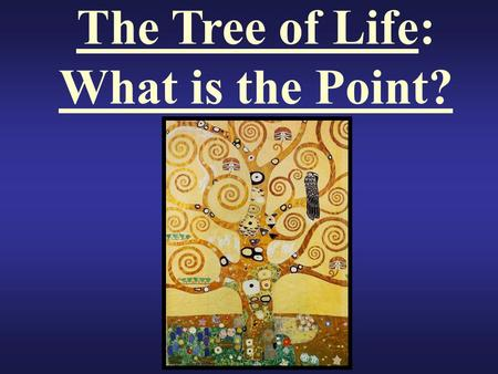 The Tree of Life: What is the Point? Big Question Why Do We Classify Organisms?
