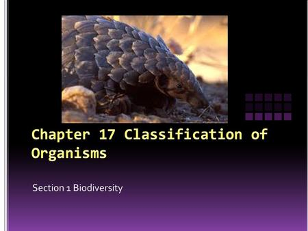 Section 1 Biodiversity. Although scientists have classified almost 2 million species, there are likely many more.