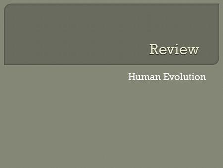 Review Human Evolution.