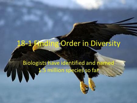 18-1 Finding Order in Diversity Biologists have identified and named 1.5 million species so far.