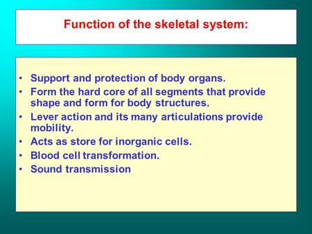Function of the skeletal system: